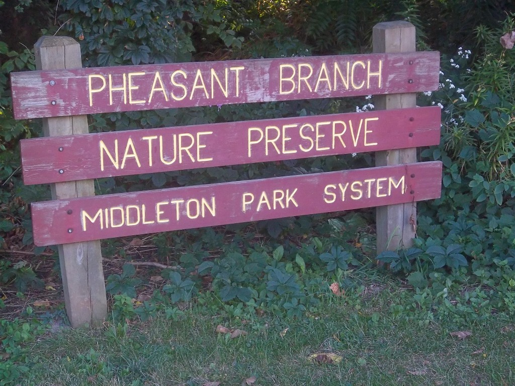 Pheasant Branch Nature Preserve Middleton WI