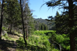 Trail at Humbug Spires near Butte